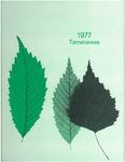 Tamanawas 1977